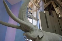 Biomuseo-008